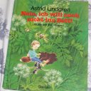 Astrid Lindgren Nein, ich will noch nicht ins Bett tolles Buch